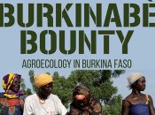 Affiche du film Burkinabé Bounty montrant des burkinabées