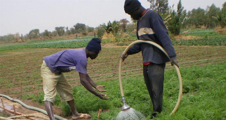 Deux personnes utilisant l'eau en agriculture au Burkina Faso